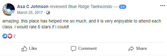 Adult 2, Blue Ridge TaeKwonDo