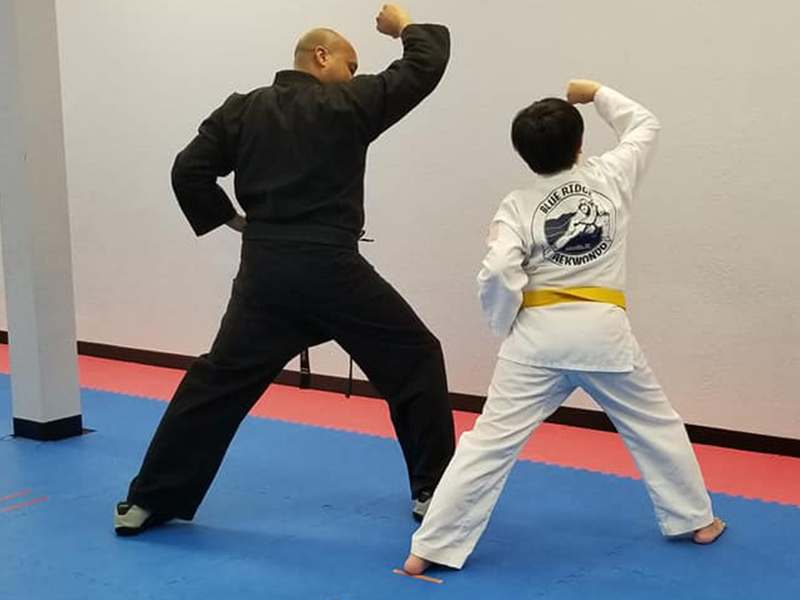 taekwondo martial arts in Asheville & Black Mountain